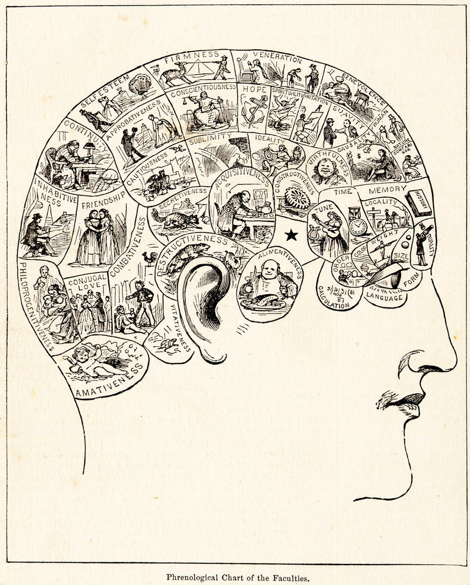 Neuroscientists put the dubious theory of 'phrenology' through ...