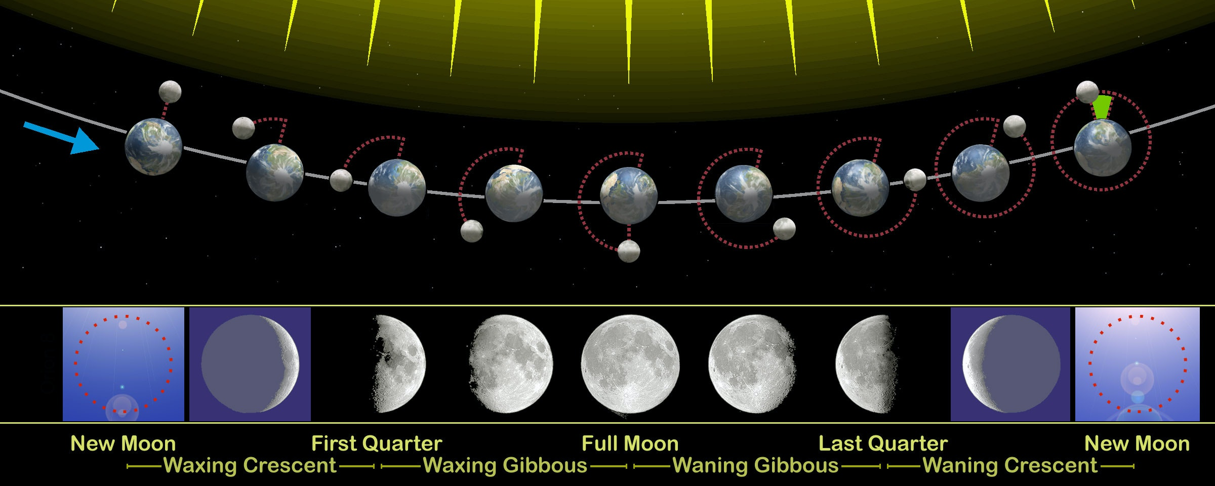 The phases of the moon visible from Earth are related to its revolution around our planet. Orion 8, CC BY-SA