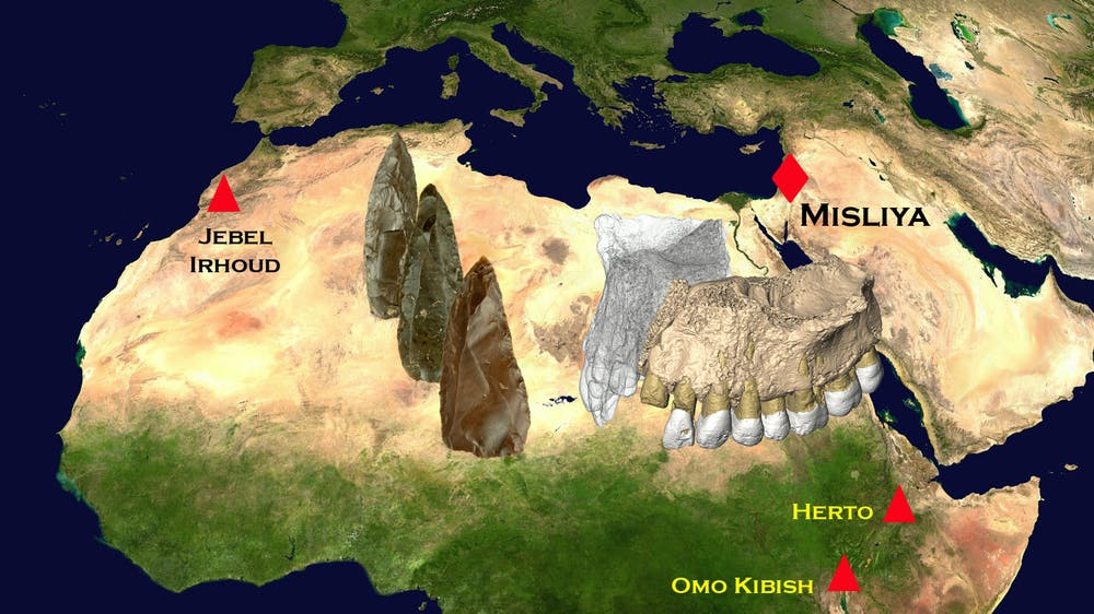 Fossil jawbone from Israel is the oldest modern human found ...