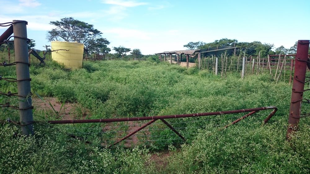 Image result for derelict farms under anc control