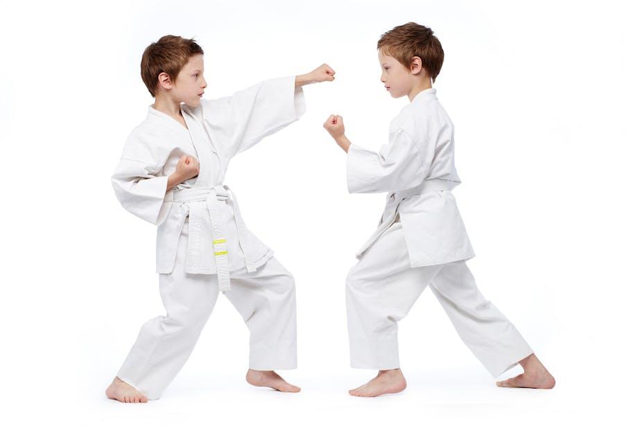Image Led Learn The Basics Of Karate Step 7