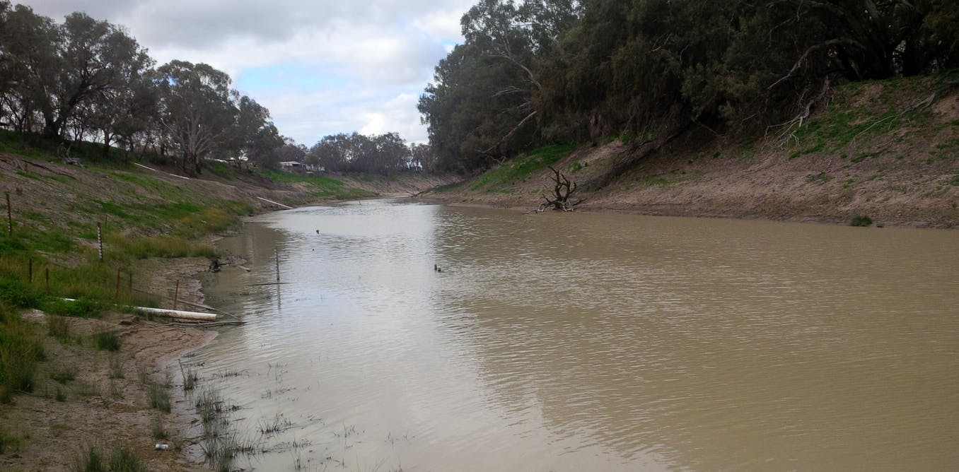 The Murray Darling Basin Plan Is Not Delivering There S No More Time To Waste