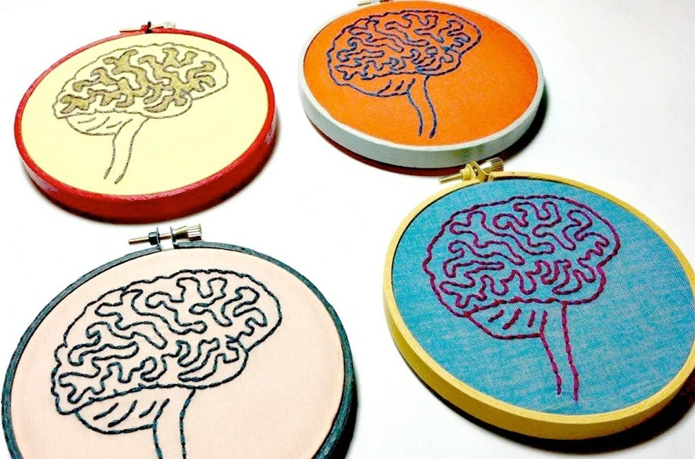 What Is Brain Plasticity And Why Is It So Important