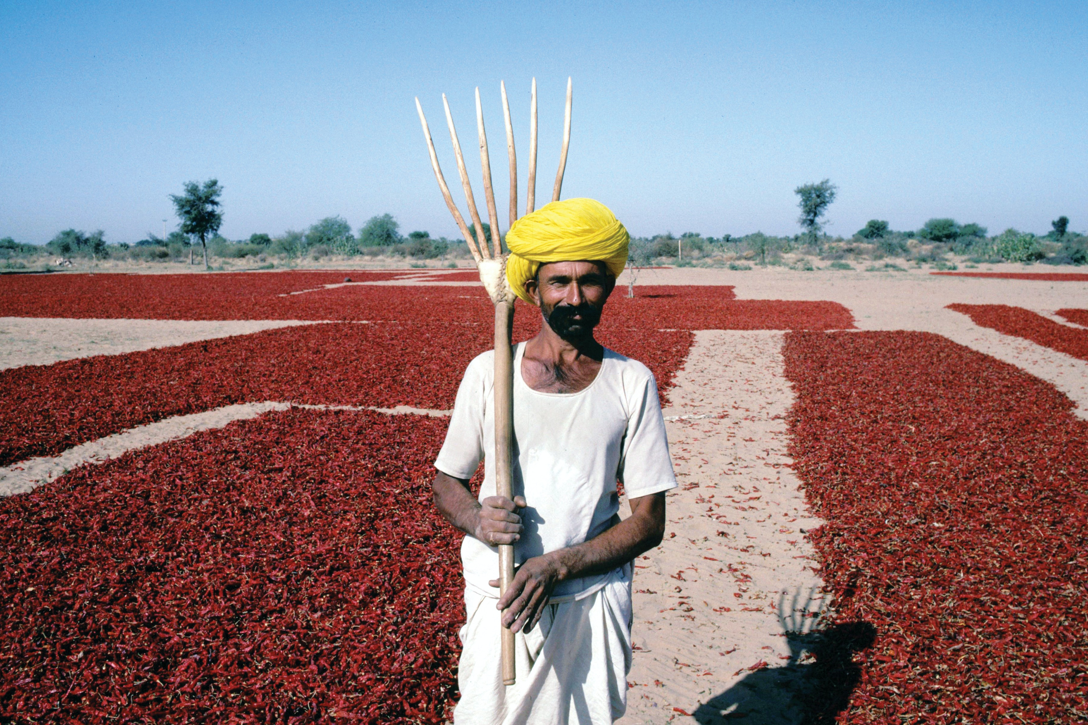 Things are heating up in India. Photo credit: Bread for the World, CC BY-NC-ND