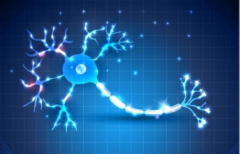 The key to treating multiple sclerosis could be inside