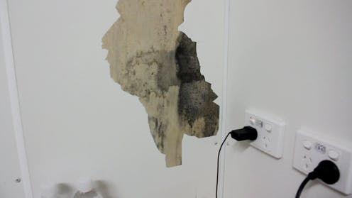 Mould levels seen at Nauru detention centre are enough to cause