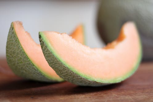 What Is Listeria And How Does It Spread In Rockmelons