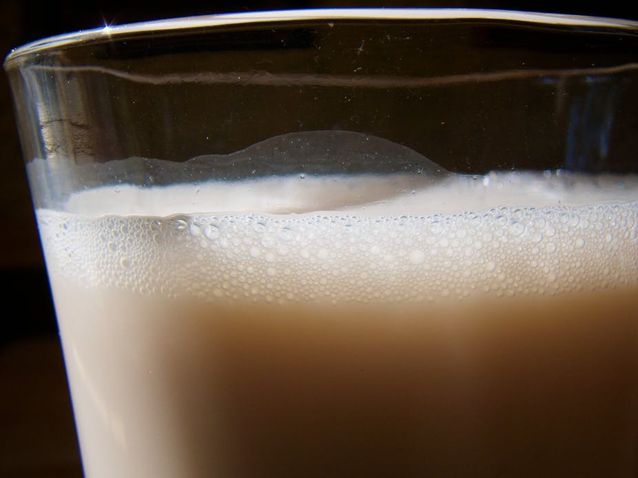 Soy Versus Dairy Which Milk Is Better For You