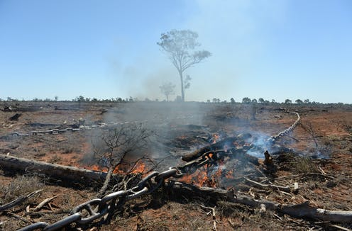 Why aren't Australia's environment laws preventing widespread land