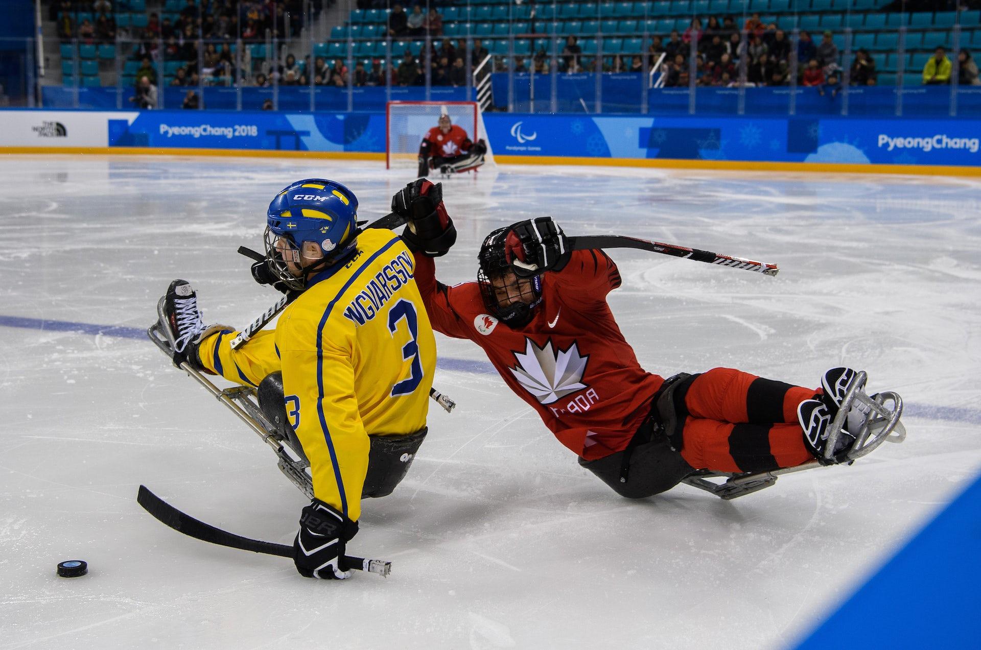 Understanding The Science Of Para Ice Hockey