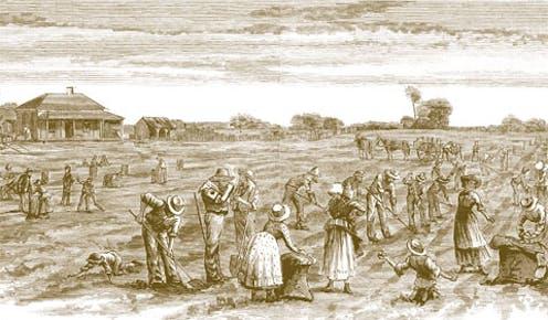 how the Irish influenced Australian English