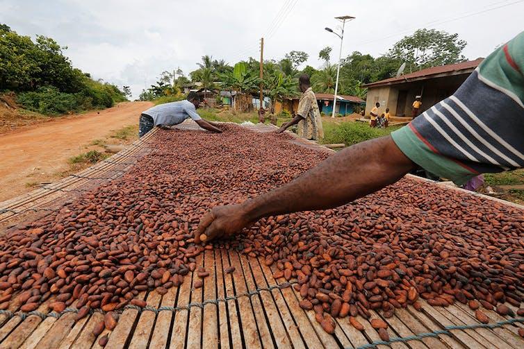 What is a tariff? An economist explains