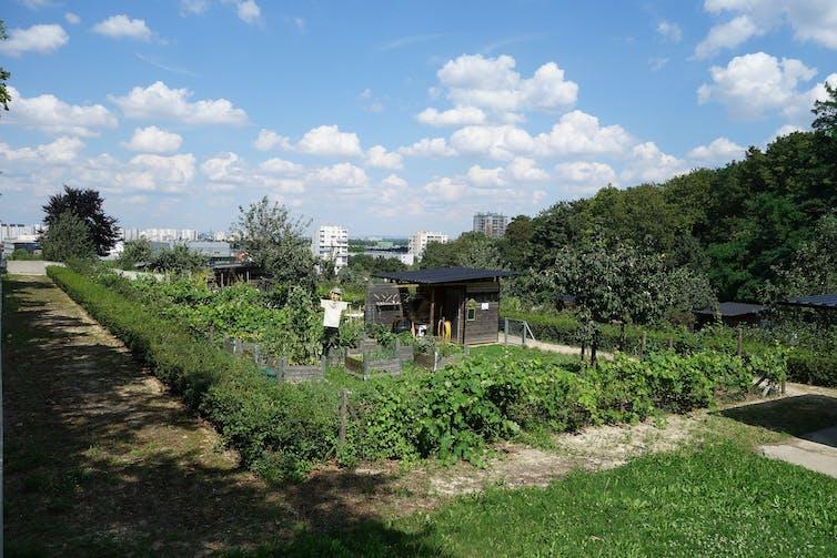 Des villes et des jardins for Les jardins de la ville paris
