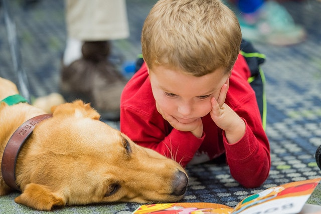 science behind emotional support animals