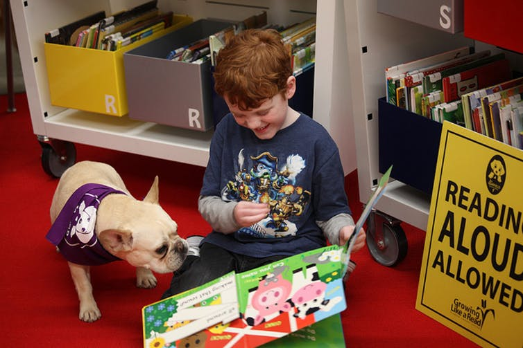 Therapy dogs can help reduce student stress, anxiety and