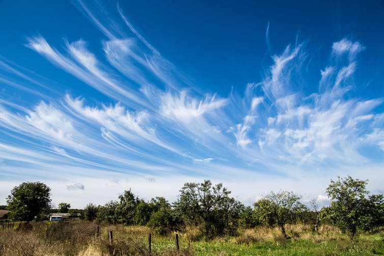 Cirrus clouds are wispy and can mark the approach of a warm front – and rain. (Shutterstock)