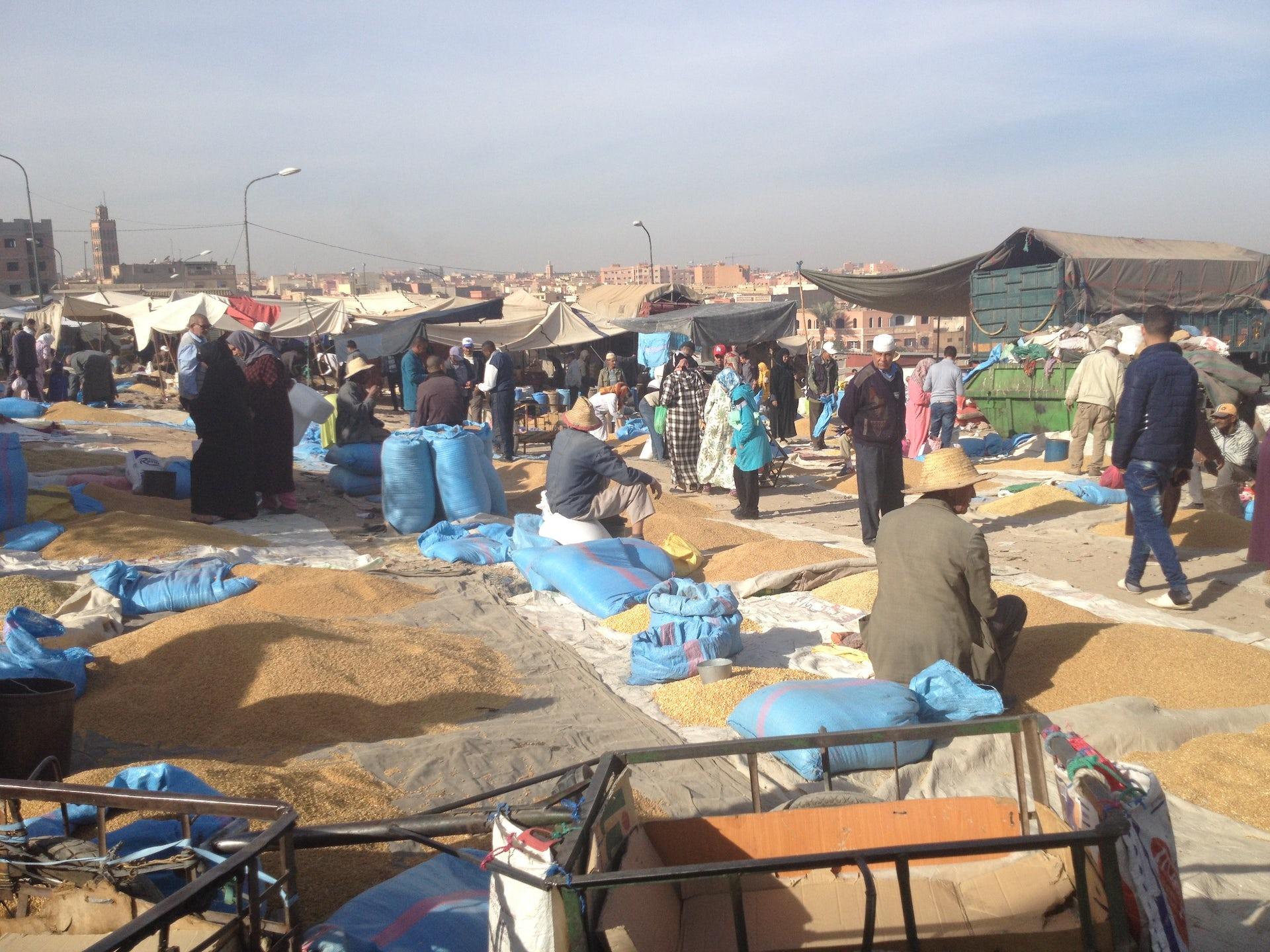 Weekly cereal market in Beni Mellal. (Photo credit: Katharina Graf, author provided)