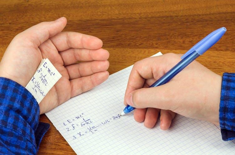 Cheat essays