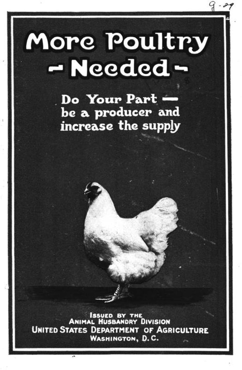 A chicken in every backyard: Urban poultry needs more regulation to