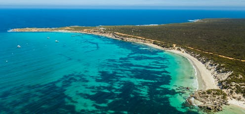 SharkSpotter combines AI and drone technology to spot sharks and aid swimmers on Australian beaches