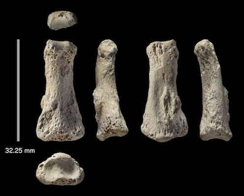 Our fossil finger discovery points to earlier human