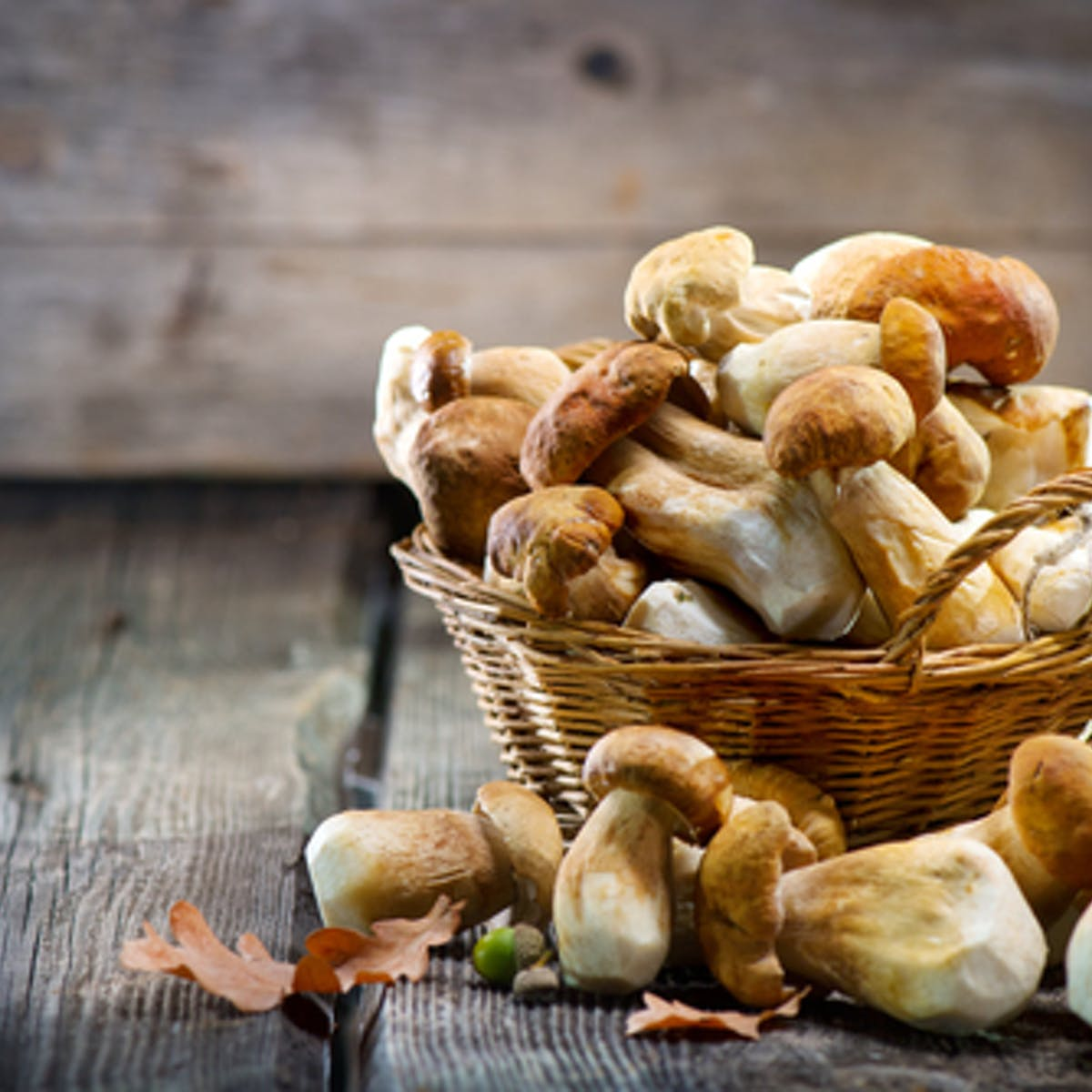 How the lowly mushroom is becoming a nutritional star