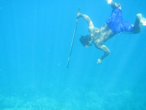 d3379acfa Are humans still evolving? Freediving people have evolved to stay underwater  longer