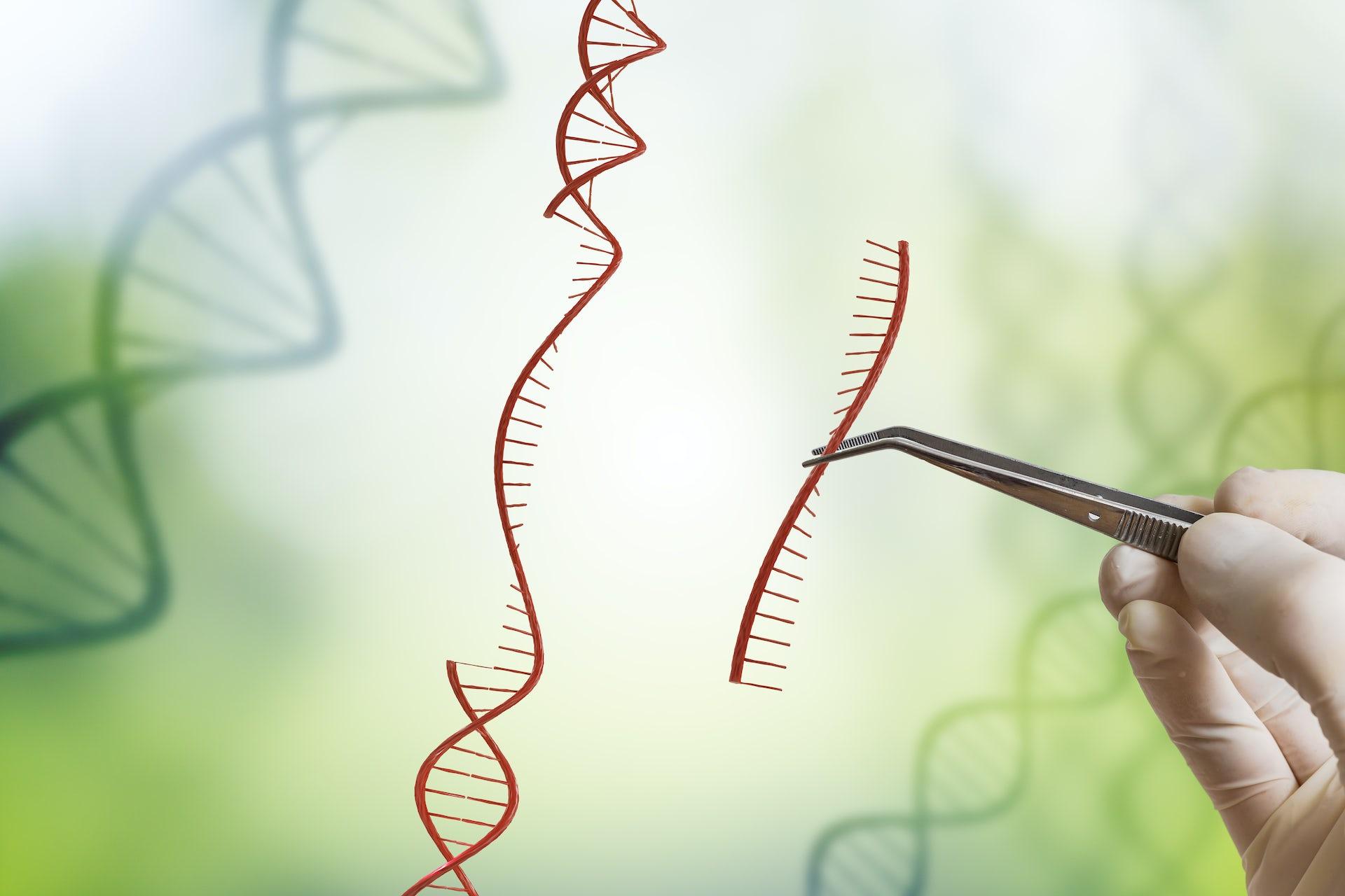 Genetics  - Magazine cover