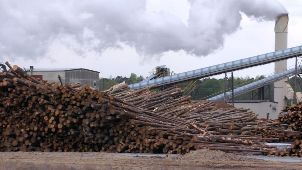 The EPA says burning wood to generate power is 'carbon