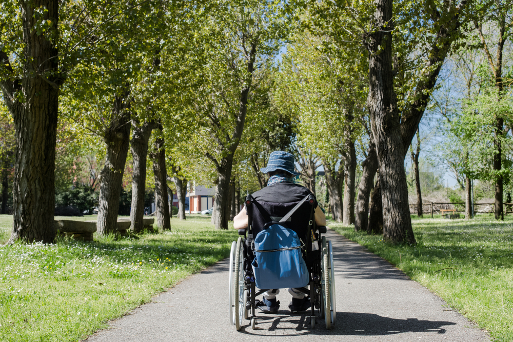 Person seated in wheelchair in park