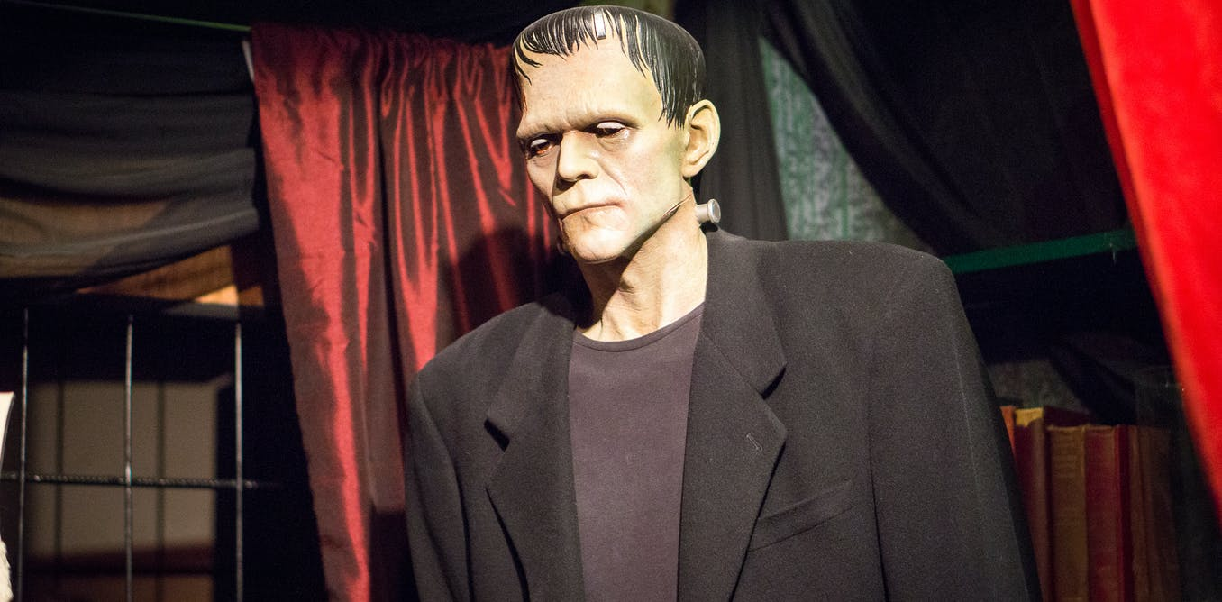 frankenstein meaning of the work as a whole
