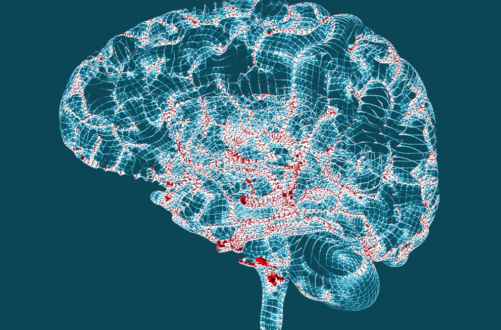 Alzheimer's disease: mounting evidence that herpes virus is a cause