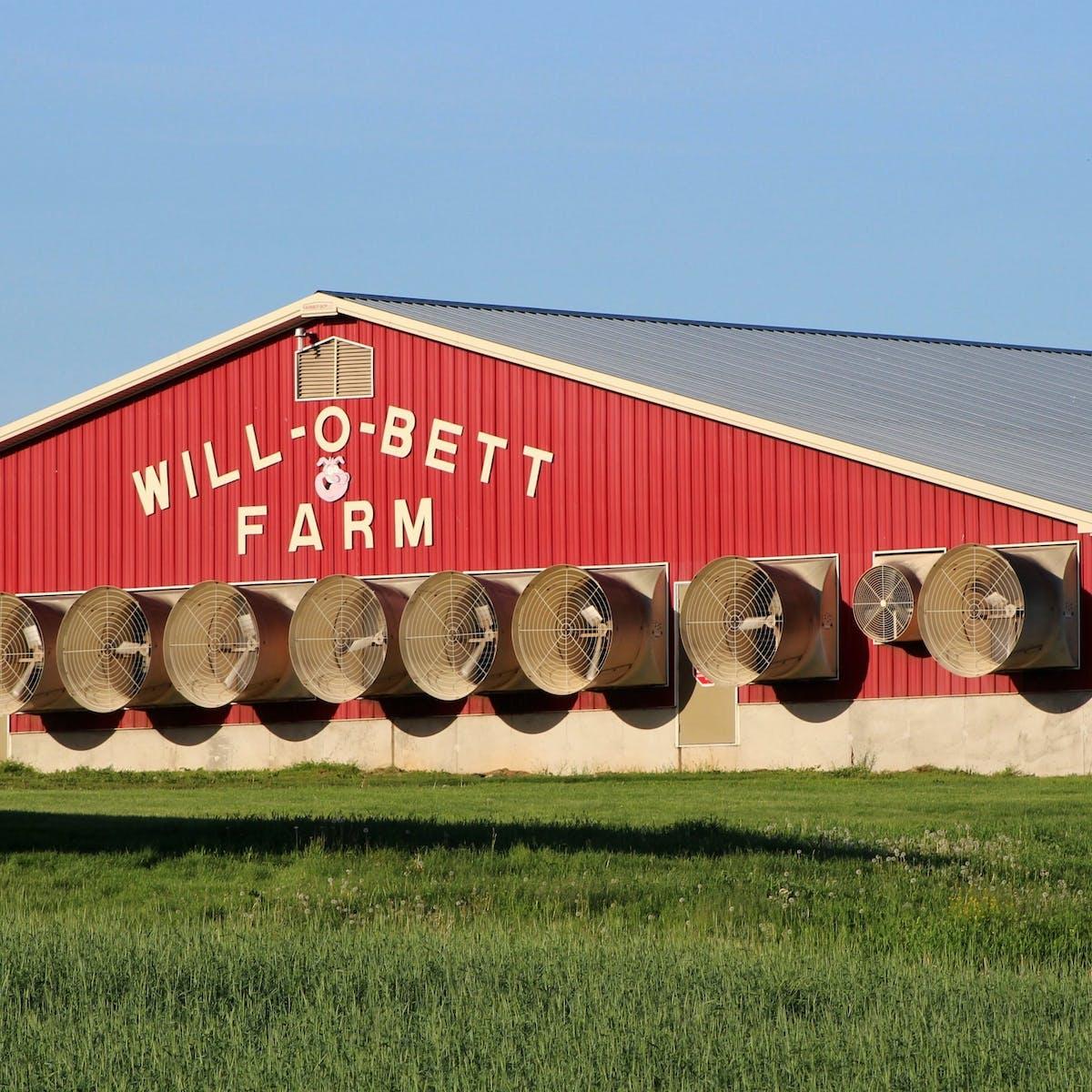 Rural Americans' struggles against factory farm pollution