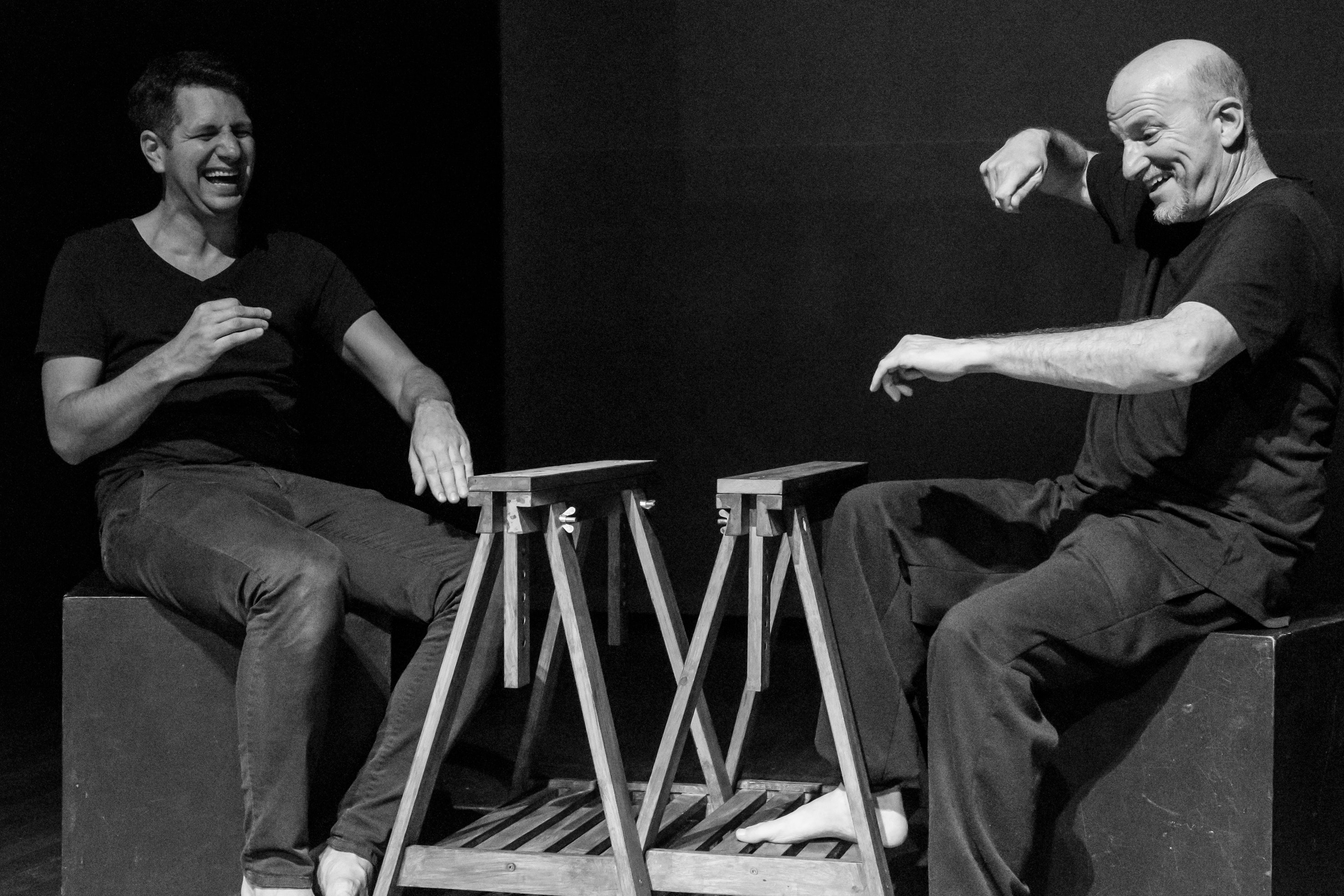 One story, two languages: sign and spoken language share the theatre stage