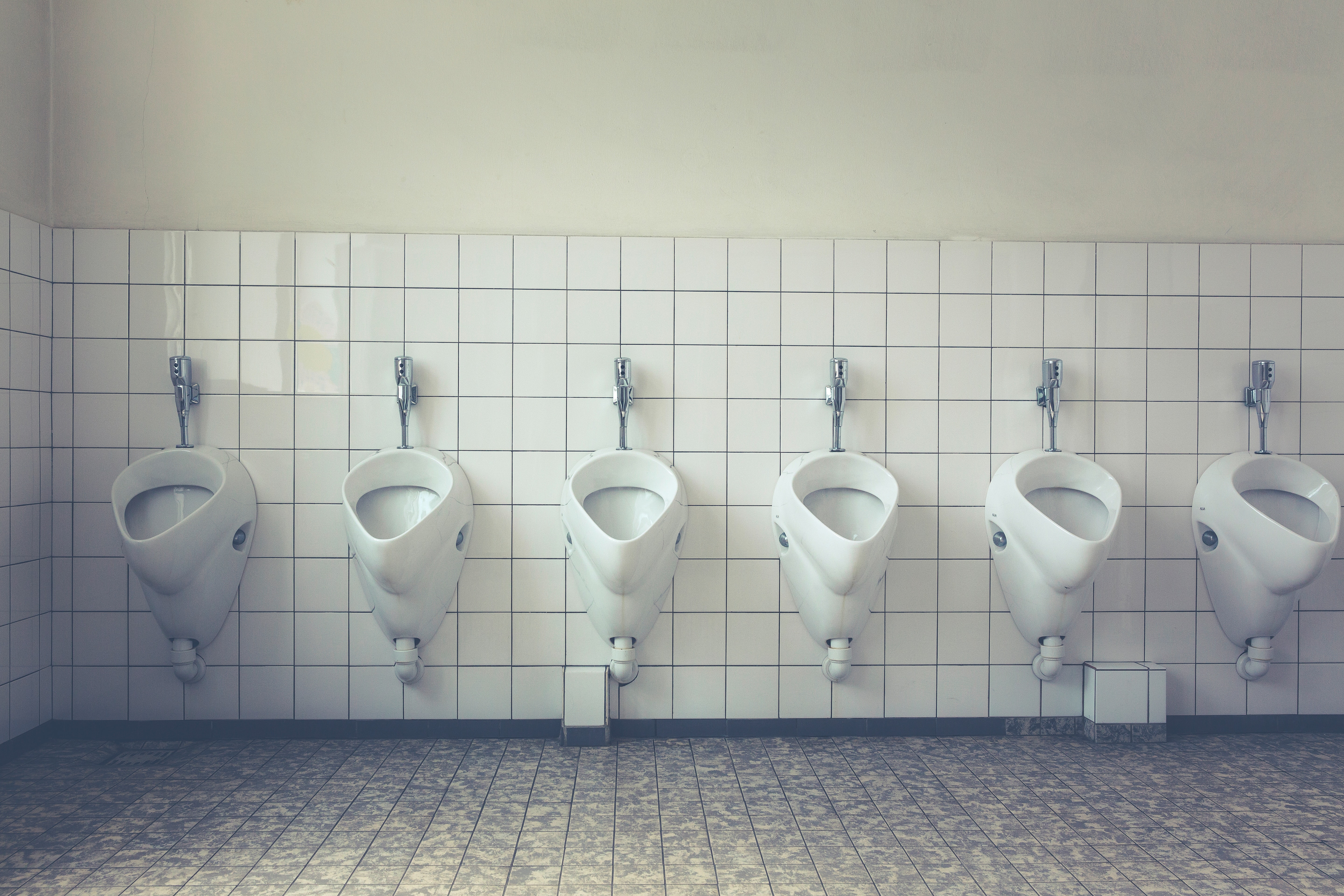 An average person visits the toilet 2500 times a year. Shutterstock