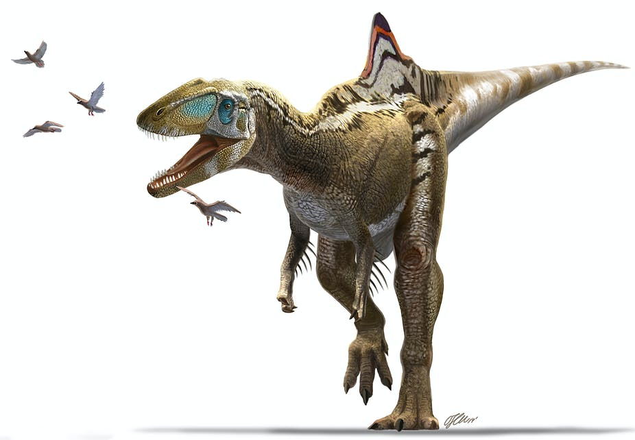 El Cameo De Concavenator El Dinosaurio De Cuenca En Jurassic World Jurassic world evolution will bring back the mighty creatures from the past, and like in the movies. el cameo de concavenator el