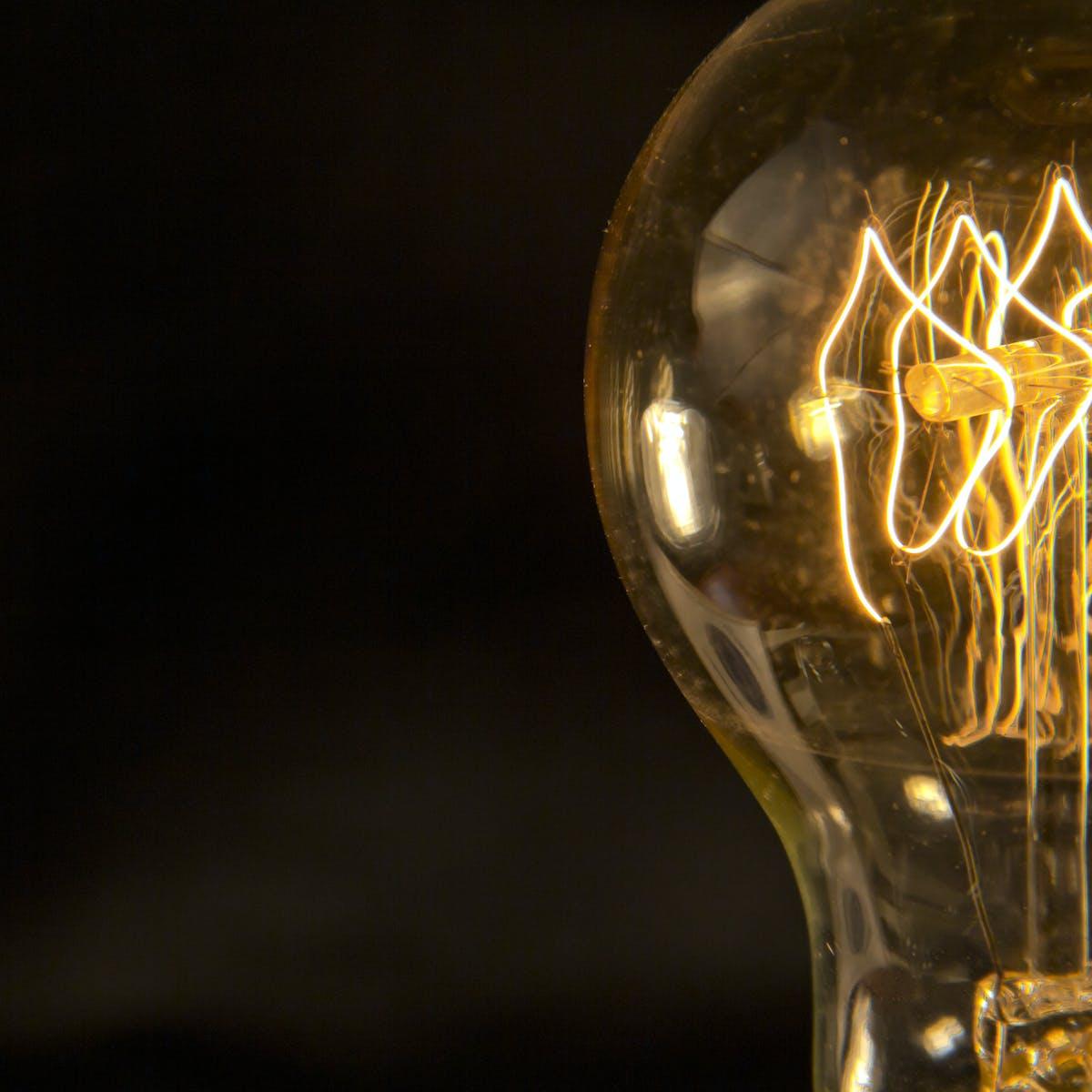 Thomas Edison: visionary, genius or fraud?