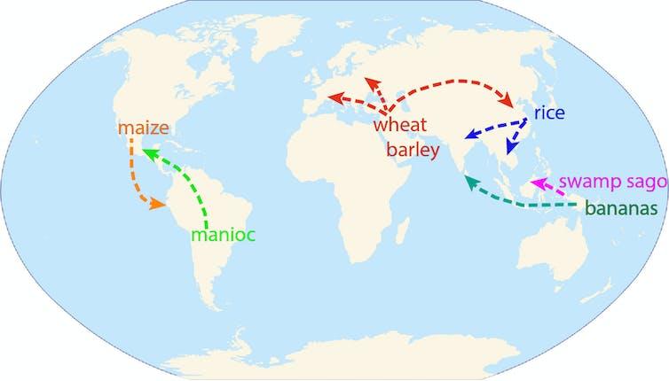 Plant dispersal around the world.