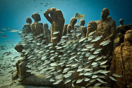 theconversation.com - Adam Smith - The science and art of reef restoration