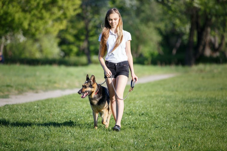 Avoid walking your dog during the hottest part of the day. Shutterstock