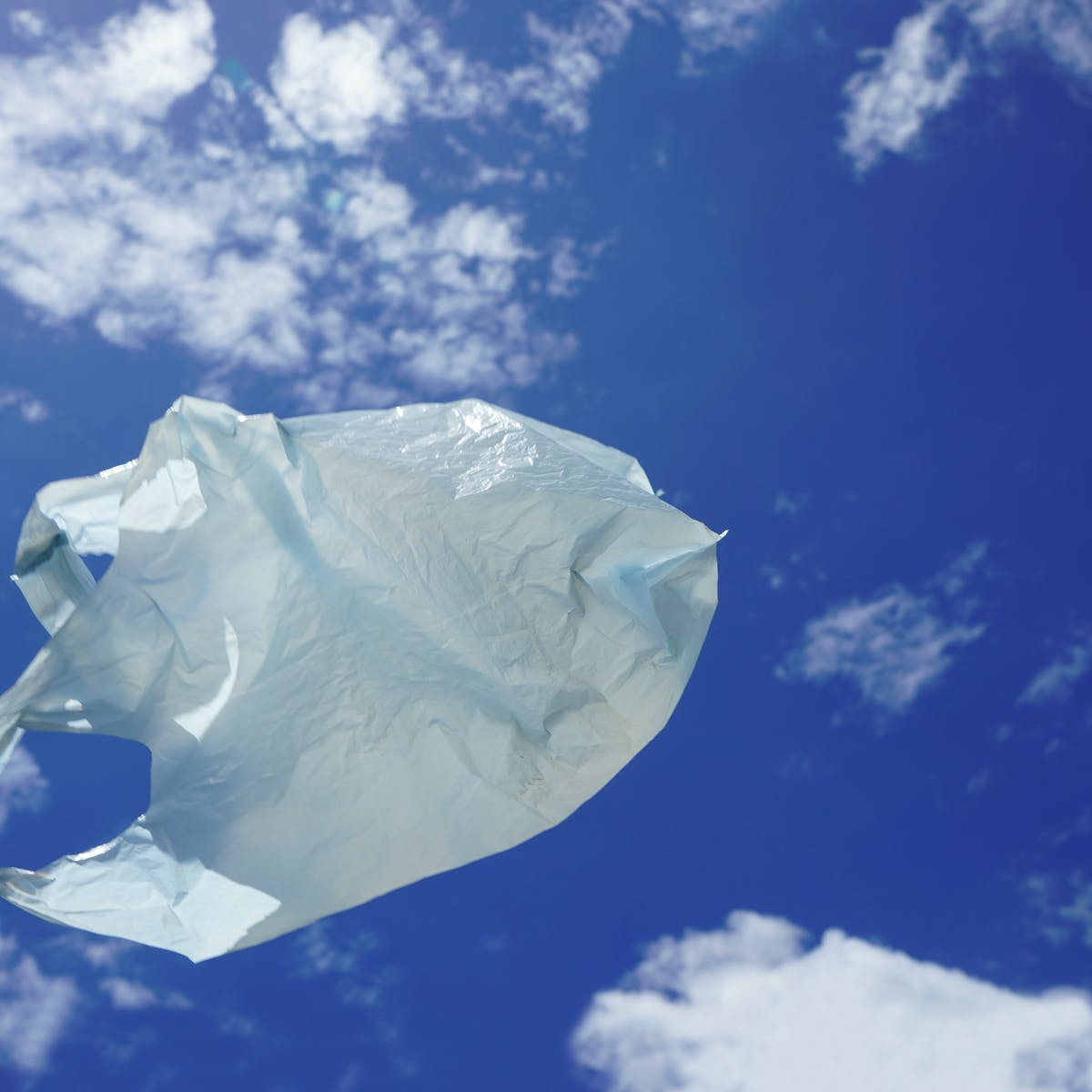 Why compostable plastics may be no better for the environment