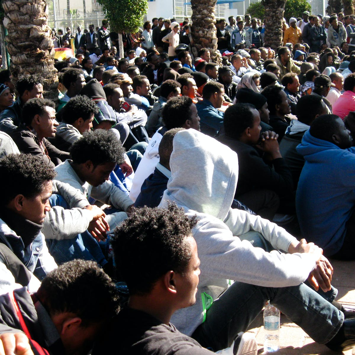 Eritrea has slashed conscription  Will it stem the flow of refugees?