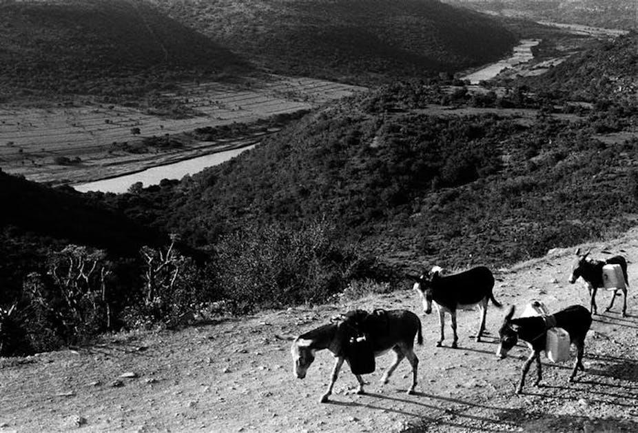 Fertile valleys in rural Eastern Cape where Nelson Mandela was born. Photo credit: Bonile Bam
