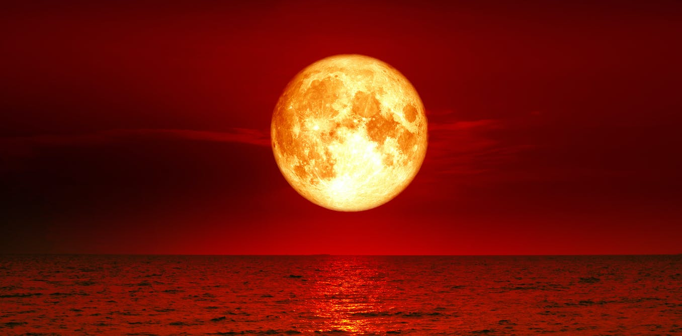 red moon kingdom - photo #22