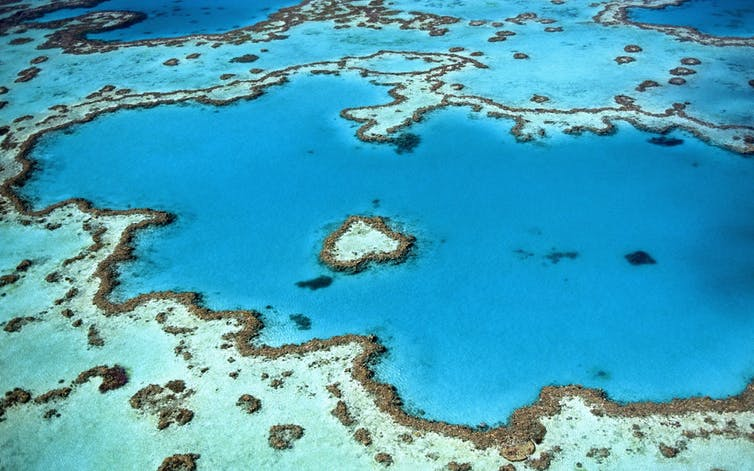 Geoengineering the Great Barrier Reef needs strong rules