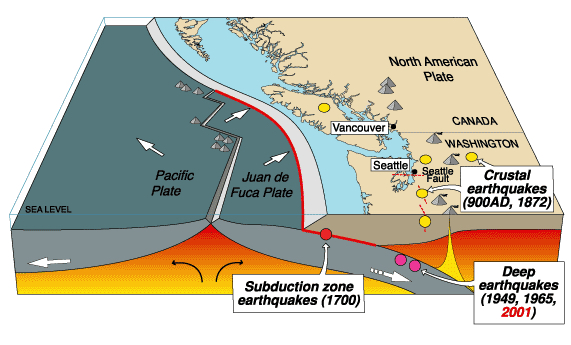 Parts of the Pacific Northwest's Cascadia fault are more seismically active than others – new imaging data suggests why