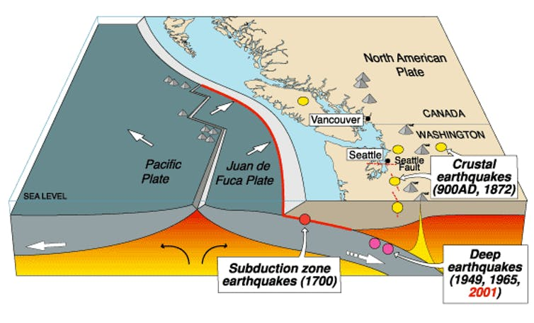 Parts of the Pacific Northwest's Cascadia fault are more seismically on