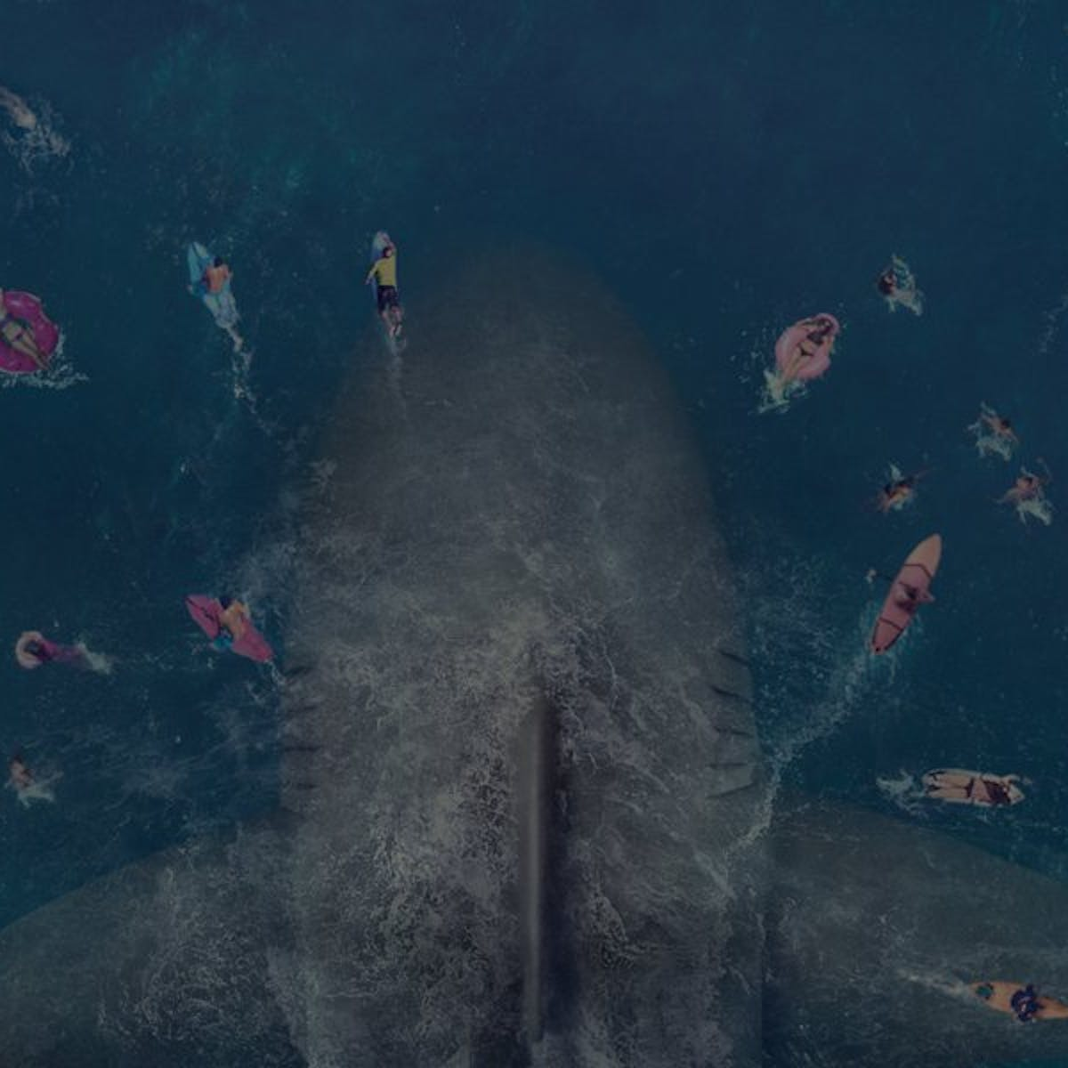 Friday essay: The Meg is a horror story but our treatment of sharks
