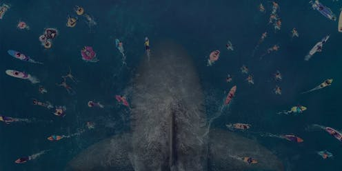 How To Use A Thesis Statement In An Essay Friday Essay The Meg Is A Horror Story But Our Treatment Of Sharks Is  Scarier Topics Of Essays For High School Students also High School Application Essay Samples Friday Essay The Meg Is A Horror Story But Our Treatment Of Sharks  Thesis In Essay