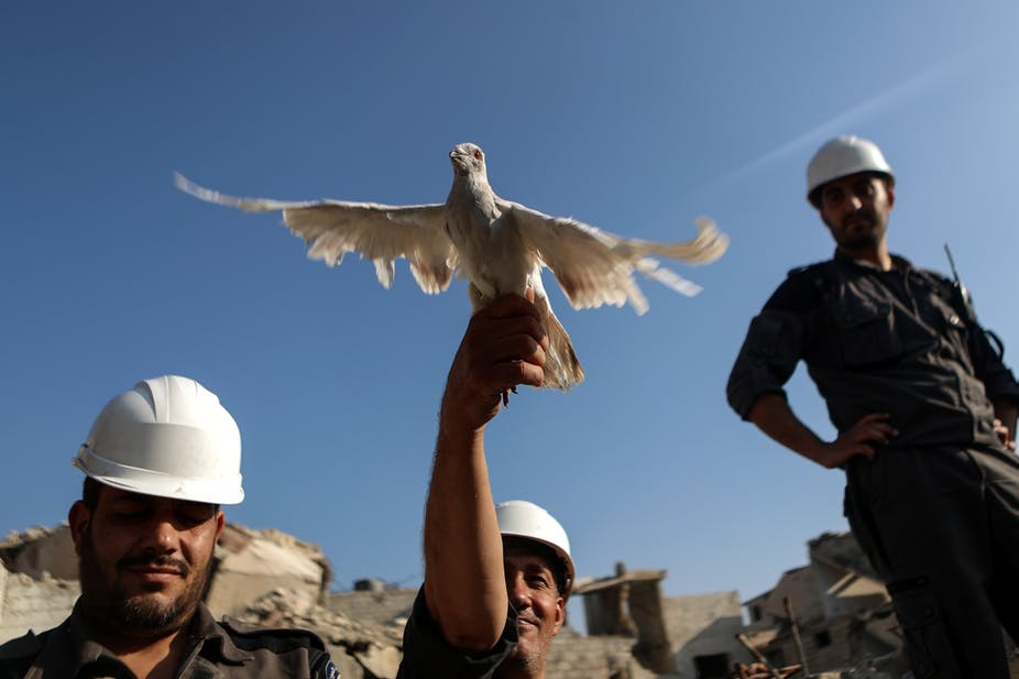 A White Helmet volunteer holds a pigeon as a symbol of peace during a  solidarity protest in al-Ghouta c09133920